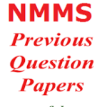 NMMS Previous Papers (pdf)