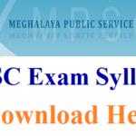MPSC State Service Exam Syllabus
